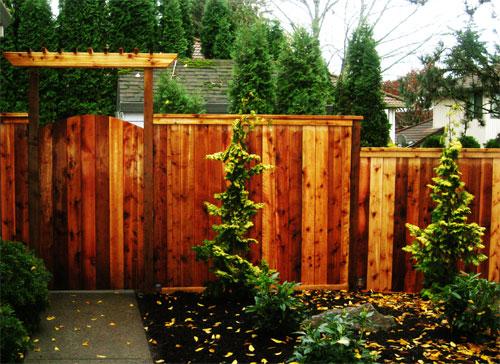 Fences - Pergolas & Awnings